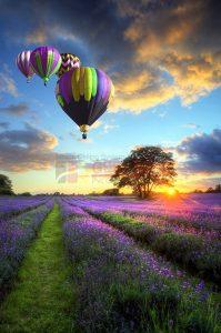 Balon Gergi Tavan Görselleri 8